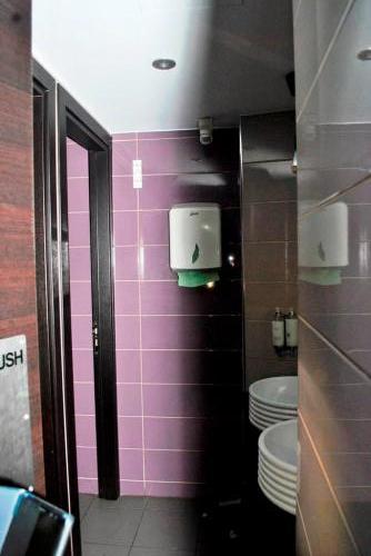 27. WC lady